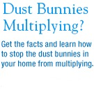 Click for Dust Bunny Doc